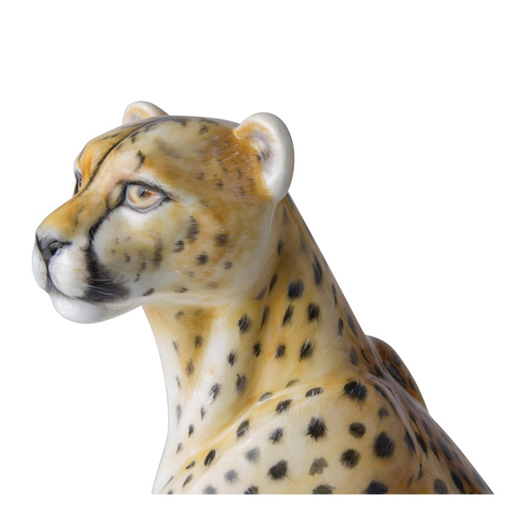 AFRICAN CHEETAH | THE BIG CAT COLLECTION